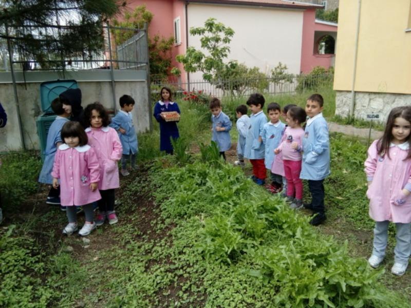 Scuola dell'Infanzia e Primaria di S.S. Giovanni e Paolo – Orto didattico